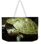 Turtle With A Tale To Tell Weekender Tote Bag