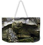 Tortoise's Stare Weekender Tote Bag