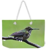 Totally Wet But Beautiful - Ruby-throated Hummingbird Weekender Tote Bag