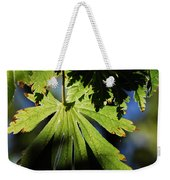 Toward The Secret Garden Weekender Tote Bag