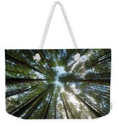 Towering Fir Trees In Oregon Forest State Park Weekender Tote Bag