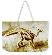 Toys And Artefacts Weekender Tote Bag