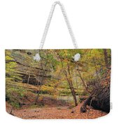 Trail In Tonty Canyon Weekender Tote Bag