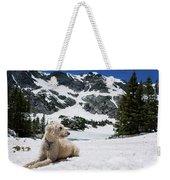 Traildog In Snow At Missouri Lakes Weekender Tote Bag