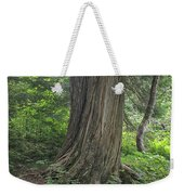 Trails Weekender Tote Bag