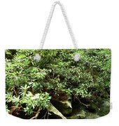 Tranquil Mountain Laurel Stream In The Great Smoky Mountains National Park Weekender Tote Bag