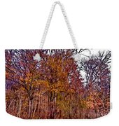 Transitions - Painterly Weekender Tote Bag