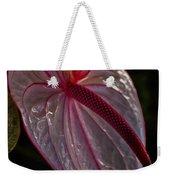 Translucent Beauty Weekender Tote Bag