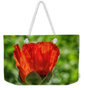 Translucent Poppy Weekender Tote Bag