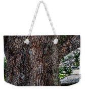 Treaty Oak 12 14 2015 039 Weekender Tote Bag