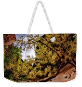 Tree Along Zion Riverside Walk Weekender Tote Bag