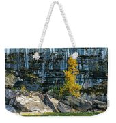Tree At Picture Rock Cruise Weekender Tote Bag