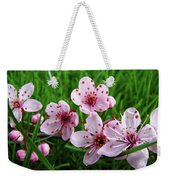 Tree Blossoms 4 Spring Flowers Art Prints Giclee Flower Blossoms Weekender Tote Bag