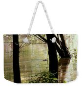 Tree Bowing To Swimming Beaver  Weekender Tote Bag