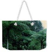 Tree Ferns Weekender Tote Bag