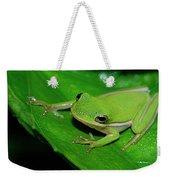 Tree Frog On Hibiscus Leaf Weekender Tote Bag