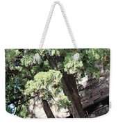 Tree Growing Through Wall Weekender Tote Bag