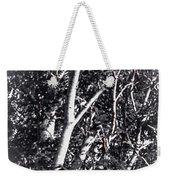Tree In Summer In Black And White Weekender Tote Bag