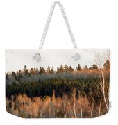 Tree Layer Cake Weekender Tote Bag