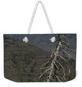 Tree Look Out Weekender Tote Bag
