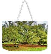 Tree Of Life 2 - Paint  Weekender Tote Bag