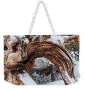 Tree Stump Arch Weekender Tote Bag