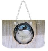 Tree Swallow In Nest Box Weekender Tote Bag