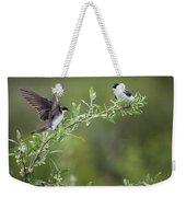 Tree Swallows Weekender Tote Bag
