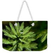 Tree Top Dew Drop Weekender Tote Bag