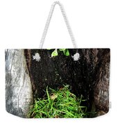 Tree Trunk Still Life Weekender Tote Bag