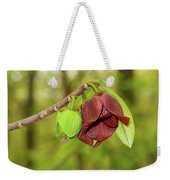 Tree Waking Up From Winter Weekender Tote Bag