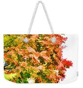 Tree With Autumn Leaves Weekender Tote Bag