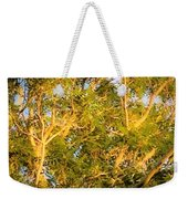 Tree With V Shaped Branches Weekender Tote Bag