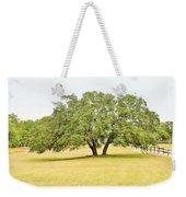 Trees 004 Weekender Tote Bag