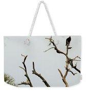 Trees 017 Weekender Tote Bag