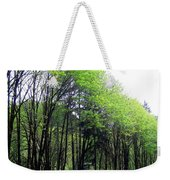 Trees Along The Umpqua River 2 Weekender Tote Bag