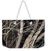 Trees Closeup Weekender Tote Bag