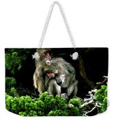 Trees In Japan 10 Weekender Tote Bag