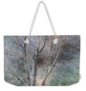 Trees In Light Weekender Tote Bag