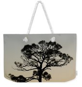 Trees In Sunset Weekender Tote Bag