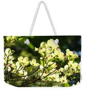 Trees Landscape Art Sunlit White Dogwood Flowers Baslee Troutman Weekender Tote Bag