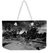 Trees Of Canyon Lands Weekender Tote Bag