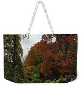 Trees Of Colorful Leaves In Autumn Mi Weekender Tote Bag