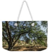 Trees Of The Forest 4 Weekender Tote Bag