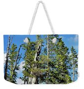Trees On The Edge 1 Weekender Tote Bag
