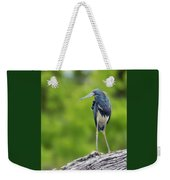 Tri-color Heron Weekender Tote Bag