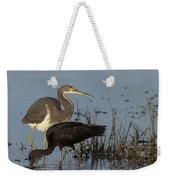 Tri-colored Heron And Glossy Ibis Weekender Tote Bag
