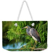 Tri-colored Heron At Sunset  Weekender Tote Bag