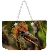 Tri Colored Heron Chick Weekender Tote Bag