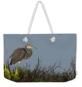 Tri-colored Heron In The Morning Light Weekender Tote Bag